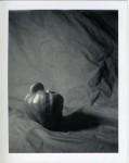 pepper1-sm.jpg
