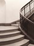 stairsPolymaxviridonq.jpg