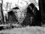 web_Graveyard_IR.jpeg