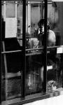 Cafe_Window002.jpg