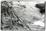 LS-Dartmoor-01-2011-006_tif.jpg