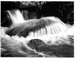 West_Dart_River_1.jpg