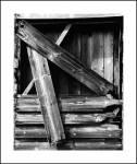 Timber_Patterns_print_scan_B_W.jpg