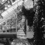 Greenhouses_Culzean_460x457_.jpg