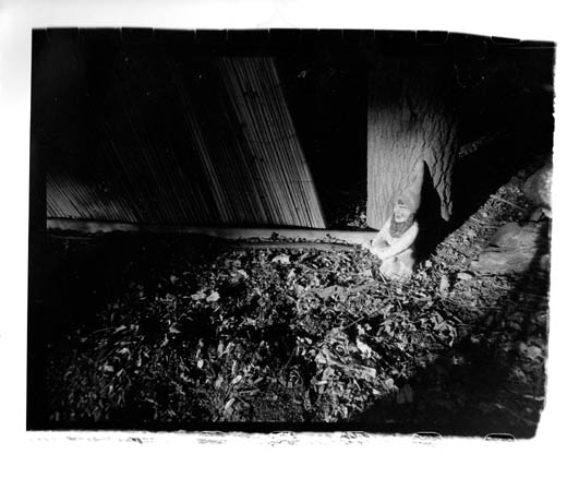 PE_R56_Gnome_in_shadows_at_GT_gardens_Rainbow_V_22mm_lens_FINAL