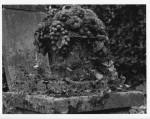 Stone_Fruit_Bowl.jpg