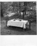 Set_dining_table.jpg