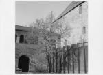 124_the_courtyard.jpg
