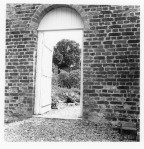 Walled_Garden_Print001.jpg